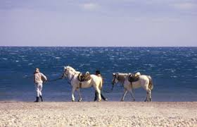promenade-a-cheval